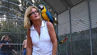 Debbie Huckaby with rescued Ohio parrots