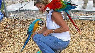 Debbie Huckaby and rescued Ohio parrots