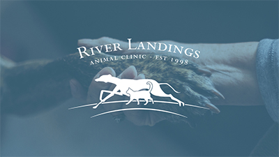 River Landing Animal Clinic